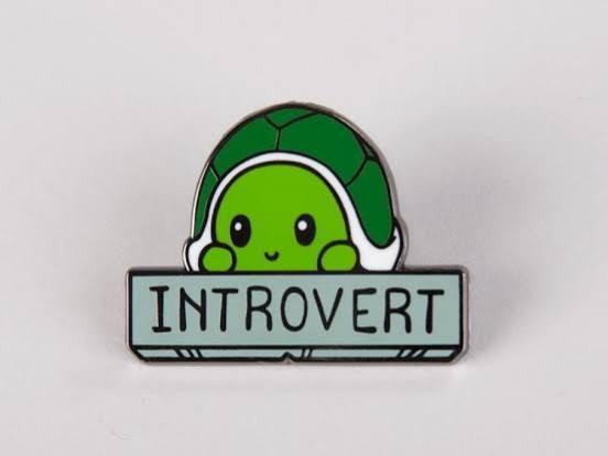 Perhatikan Beberapa Hal Ini Untuk Berteman Dengan Orang Introvert