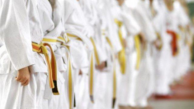 Kalsel Siapkan 5000 Karateka Pada Haornas 2019