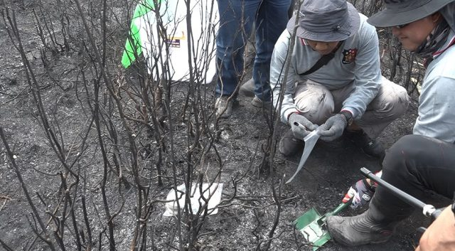 Ahli Kerusakan Lingkungan : 99,9 Persen Karhutla Disebabkan Ulah Manusia