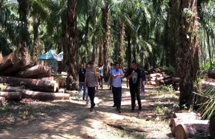 Polisi Buru 2 Tersangka Ilegal Logging di Riam Adungan