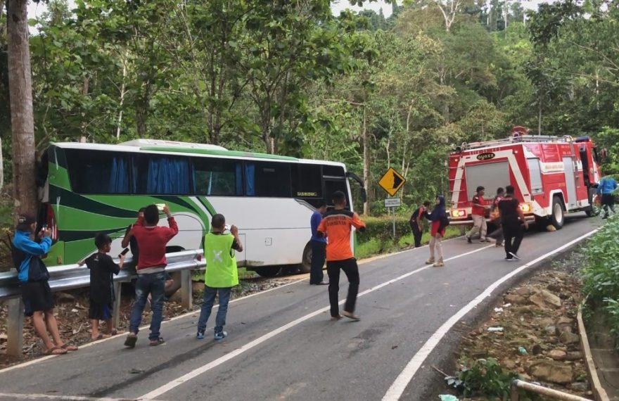 kondisi tempat kejadian, setelah belakang bus menabrak pohon.