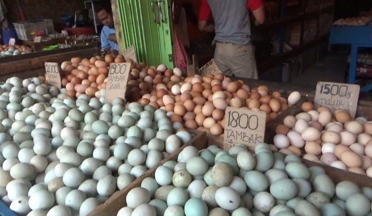 penjualan telur di Pasar Antasari