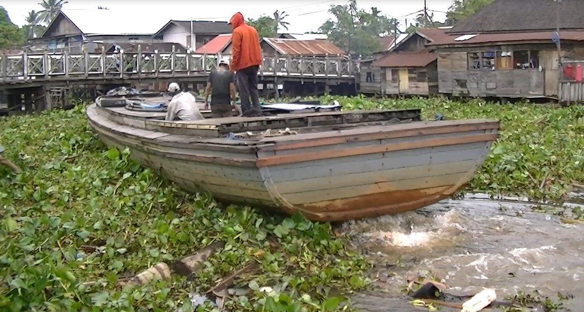 Eceng Gondok 'Serbu' Sungai Kuin