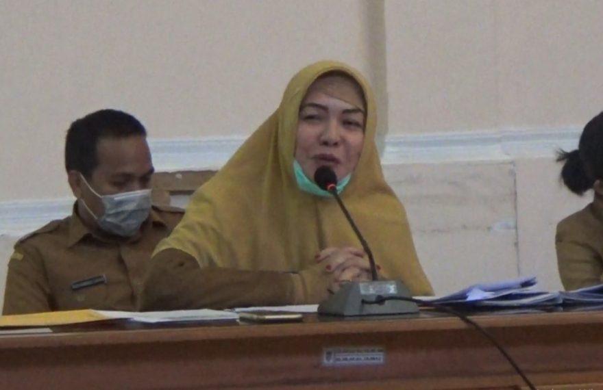 Ernawati, PLT Kepala Dinkes Kotabaru