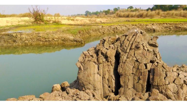 Food Estate di Kalteng Manfaatkan Tanah Aluvial, Bukan Lahan Gambut