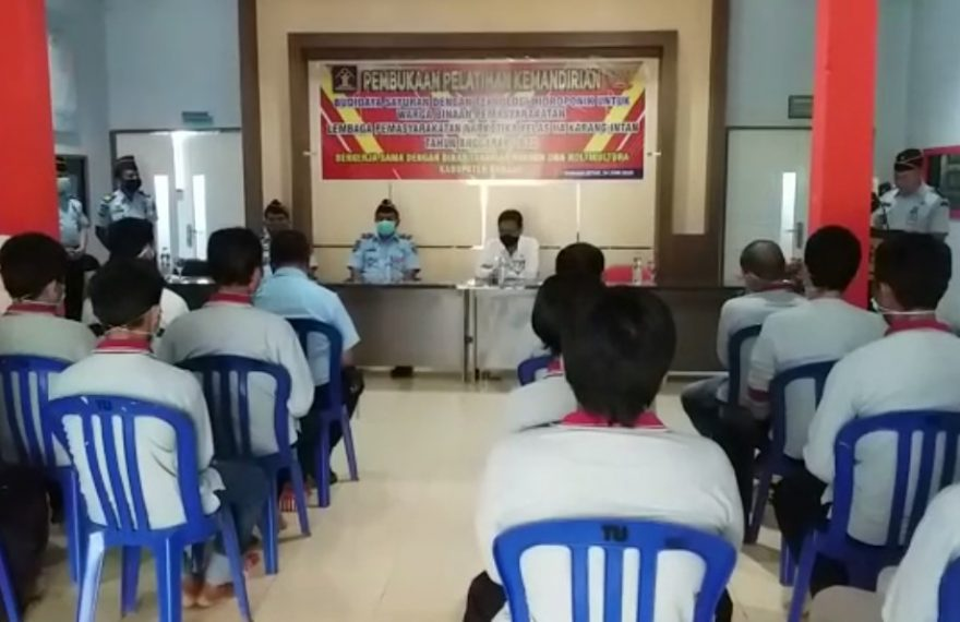 500 Warga Binaan Mengikuti Pelatihanbudidaya Sayuran Hydroponik