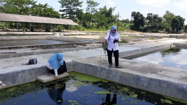 Dinas Perikanan Banjar Pantau Desa Riam Kanan