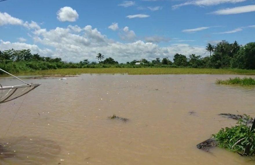banjir di kabupaten Tanah Laut