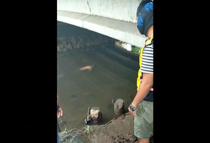 Sukma Ditemukan Mengapung di Bawah Jembatan Jalan Rawasari