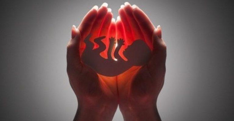 Aborsi 32.760 Janin, Klinik Jakpus Beroperasi Sejak 2017
