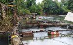 Akibat Banjir, Kerugian Sektor Perikanan Kabupaten Banjar Rp 77,2 Milliar