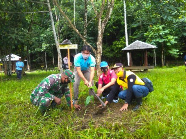 KPH Kusan Lakukan Penanaman Bibit Ulin Di Kawasan Wisata Goa Liang Bangkai