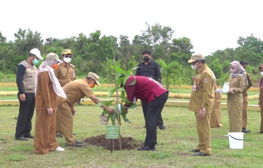Proses Penanaman Pohon (Foto: Duta tv)
