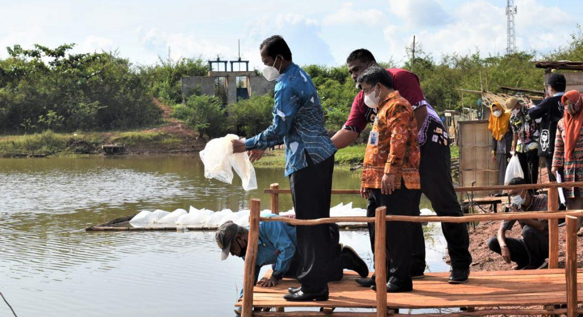 Bupati Tanah Laut, Sukamta, menebar benih ikan (foto:duta tv)
