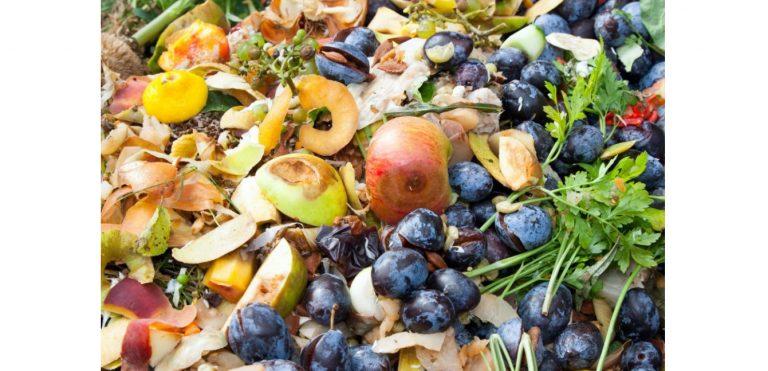 Banyak Sampah Organik di Banjarmasin saat Lebaran