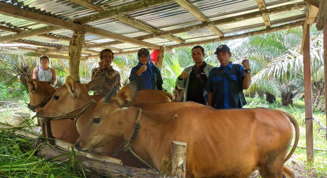 DPRD Gunung Mas mengunjungi lokasi peternakan